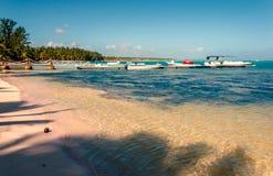 Plage tropicale avec de l'eau clair océan, noix de coco sur la perche, un j images stock
