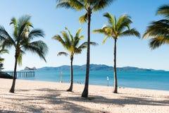Plage tropicale avec des cocotiers Photographie stock libre de droits