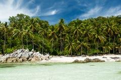Plage tropicale avec des palmiers Images libres de droits