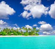 Plage tropicale avec des palmiers au-dessus de ciel bleu Photographie stock