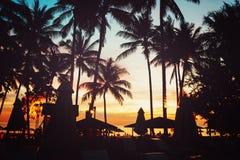 Plage tropicale avec des palmiers et des parapluies Photographie stock libre de droits