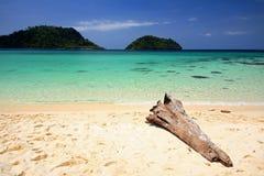 Plage tropicale avec le log en bois et la mer d'Andaman en cristal photos libres de droits