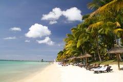Plage tropicale avec le sable, les palmiers et les parasols blancs Photo stock
