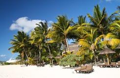 Plage tropicale avec le sable, les palmiers et les parasols blancs Images stock