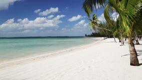 Plage tropicale avec les palmiers et le bateau Photos libres de droits
