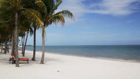 Plage tropicale avec les palmiers et le salon Photo libre de droits