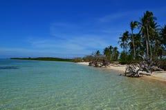 Plage tropicale avec les paumes et la mer Image libre de droits