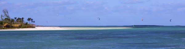 Plage tropicale avec plusieurs kitesurfers Image stock