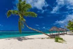 Plage tropicale avec un palmier simple et un fale de plage Image stock