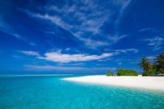 Plage tropicale blanche en Maldives avec peu de palmiers et lagune Photo stock