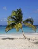 Plage tropicale d'île Photographie stock