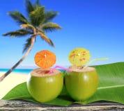 Plage tropicale de palmier de cocktails frais de noix de coco Photographie stock