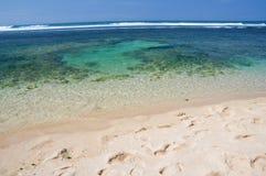Plage tropicale de paradis Images stock