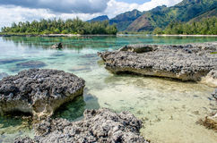 Plage tropicale de paradis Image stock