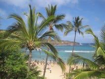 Plage tropicale de paradis (Hawaï) Image libre de droits