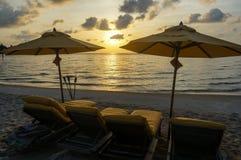 Plage tropicale de Sandy avec des chaises de plate-forme Photos stock