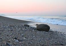 Plage tropicale de soirée de sunsete Image stock