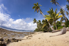Plage tropicale, Fiji Photographie stock