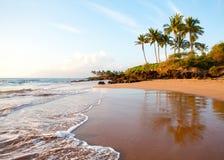 Plage tropicale Hawaï photos libres de droits
