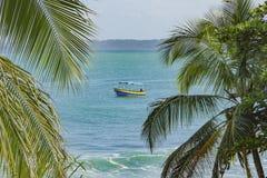 Plage tropicale intacte dans le del Toro Panama de Bocas Photos libres de droits