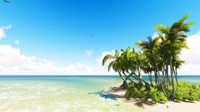 Plage tropicale intacte de sable Photographie stock