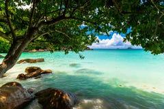 Plage tropicale Les Seychelles photos stock