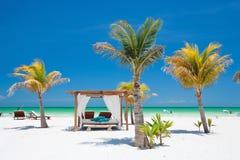 Plage tropicale parfaite Photo stock
