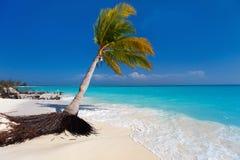 Plage tropicale parfaite Image stock
