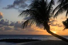 Plage tropicale sur le coucher du soleil barbados photos stock