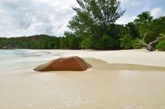 Plage tropicale sur les Seychelles Photo stock