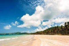 Plage untoched tropicale avec les palmiers et le sable blanc philippines Photo stock