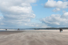 Plage venteuse Image stock