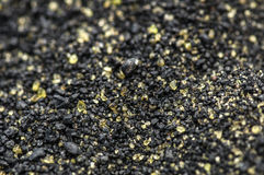 Plage verte de sable Image stock