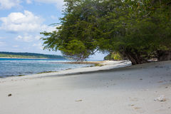 Plages blanches de sable du Timor oriental Photo stock