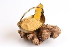 Plai (thai name) (Zingiber cassumunar Roxb.) Ginger Stock Images