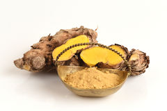 Plai (thai name) (Zingiber cassumunar Roxb.) Ginger Royalty Free Stock Images