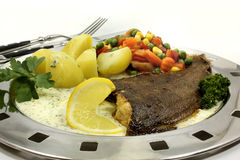 Plaice Stock Images