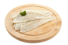 Plaice Stock Photography