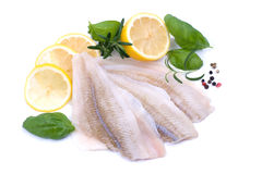 Plaice fillet. Fresh plaice fillet on white ground Royalty Free Stock Images