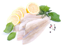 Plaice fillet. Fresh plaice fillet on white ground Stock Photography