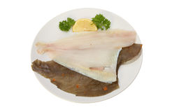 Plaice fillets. Plaice sea fish fillets on a plate with a garnish of lemon and parsley isolated against white Stock Image