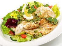 Plaice Fish Fillet with Salad royalty free stock photography