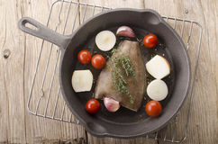 Plaice with vegetable in a pan. Plaice with tomato, onion, garlic and thyme in a cast iron pan Stock Images