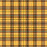Plaid Background_Gold-Green Stripe. A gold and brown plaid background that can be seamlessly tiled royalty free illustration