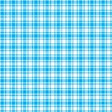 Plaid bianco e blu Fotografia Stock