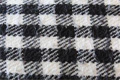 Plaid controllato in bianco e nero Fotografia Stock Libera da Diritti