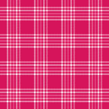 Plaid dentellare Immagine Stock