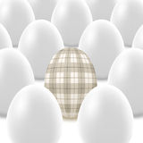 Plaid egg concept Royalty Free Stock Image