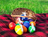 Plaid and the eggs of a basket Royalty Free Stock Photo
