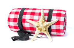 Plaid picnic blanket and sea star Stock Photo